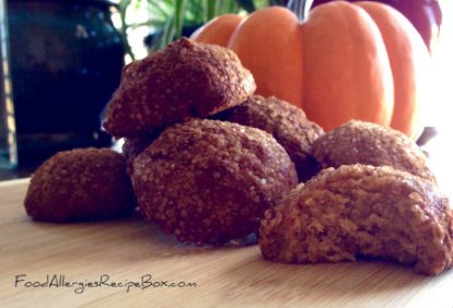 Food allergies recipe box recipes avoiding wheat gluten eggs and pumpkin snickerdoodle cookie recipe forumfinder Choice Image