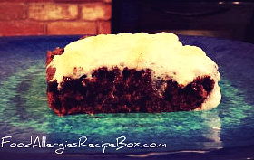 Brownie Recipes - Wheat, Gluten, Dairy and Egg Free!