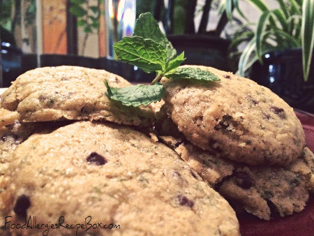 Mint Chocolate Chip Cookie Recipe!